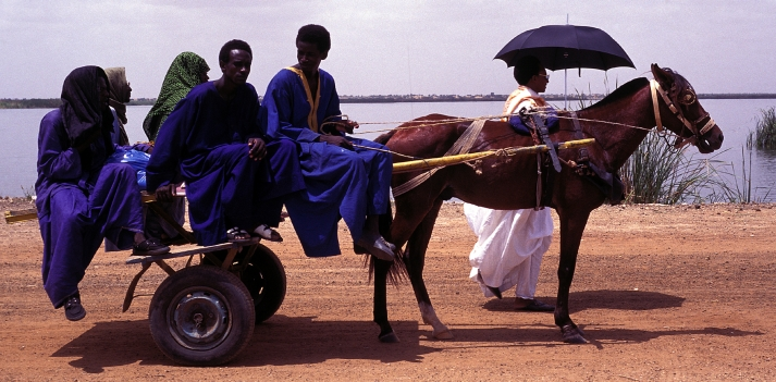 Azonzo in Senegal  4