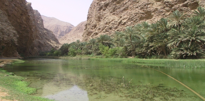 Viaggio in Oman con Azonzo Travel  3
